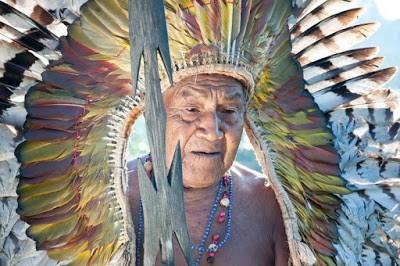 Velho Yawa - Blog Terranauas