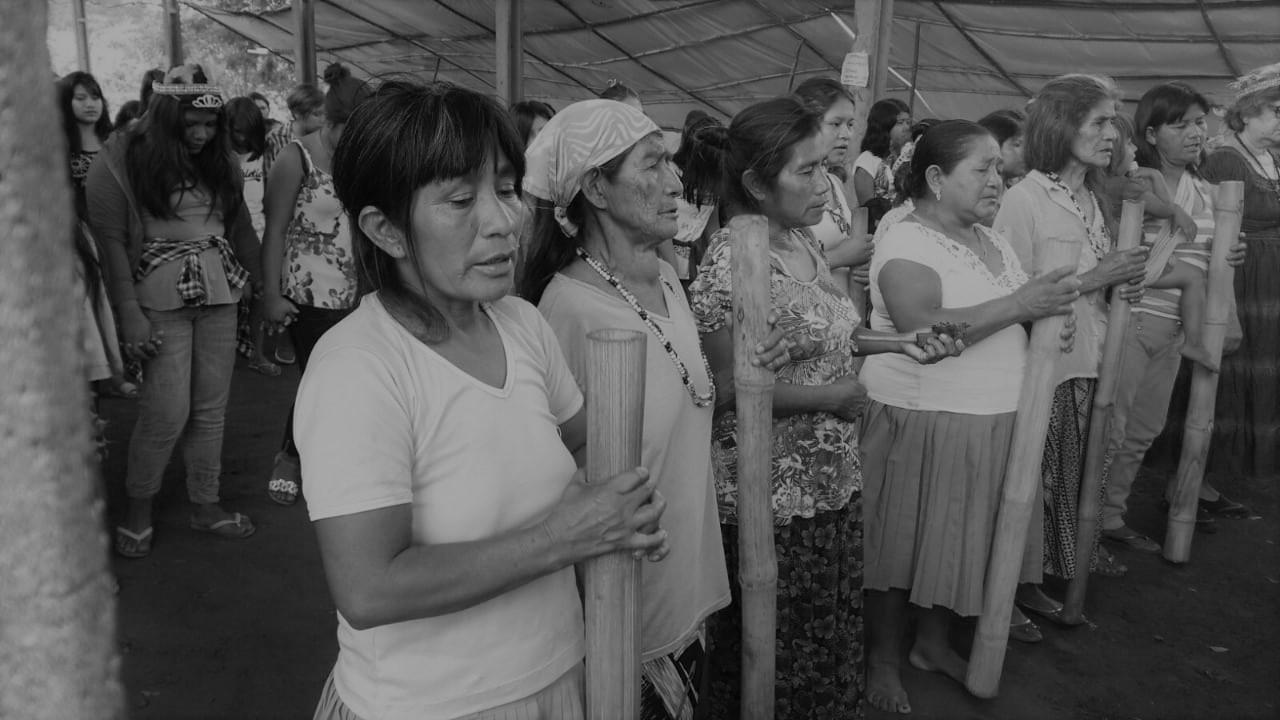 Pandemia anti-indígena: Funai atua contra os direitos territoriais guarani e anula Terra Indígena