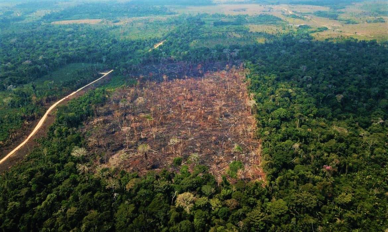 Leia a Nota de Repúdio – Projeto de Lei amplia injustiças, desmatamento e caos agrário